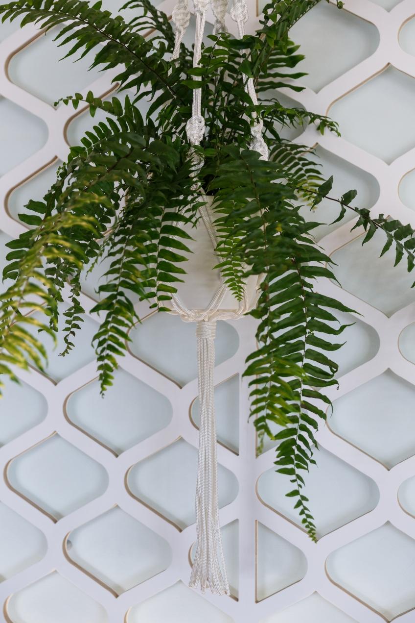 modern macrame plant hanger Australia