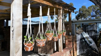 Macrame plant hangers Adelaide Australia Bianca Barbaro