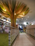 Bianca Barbaro Dillons Bookshop (2)